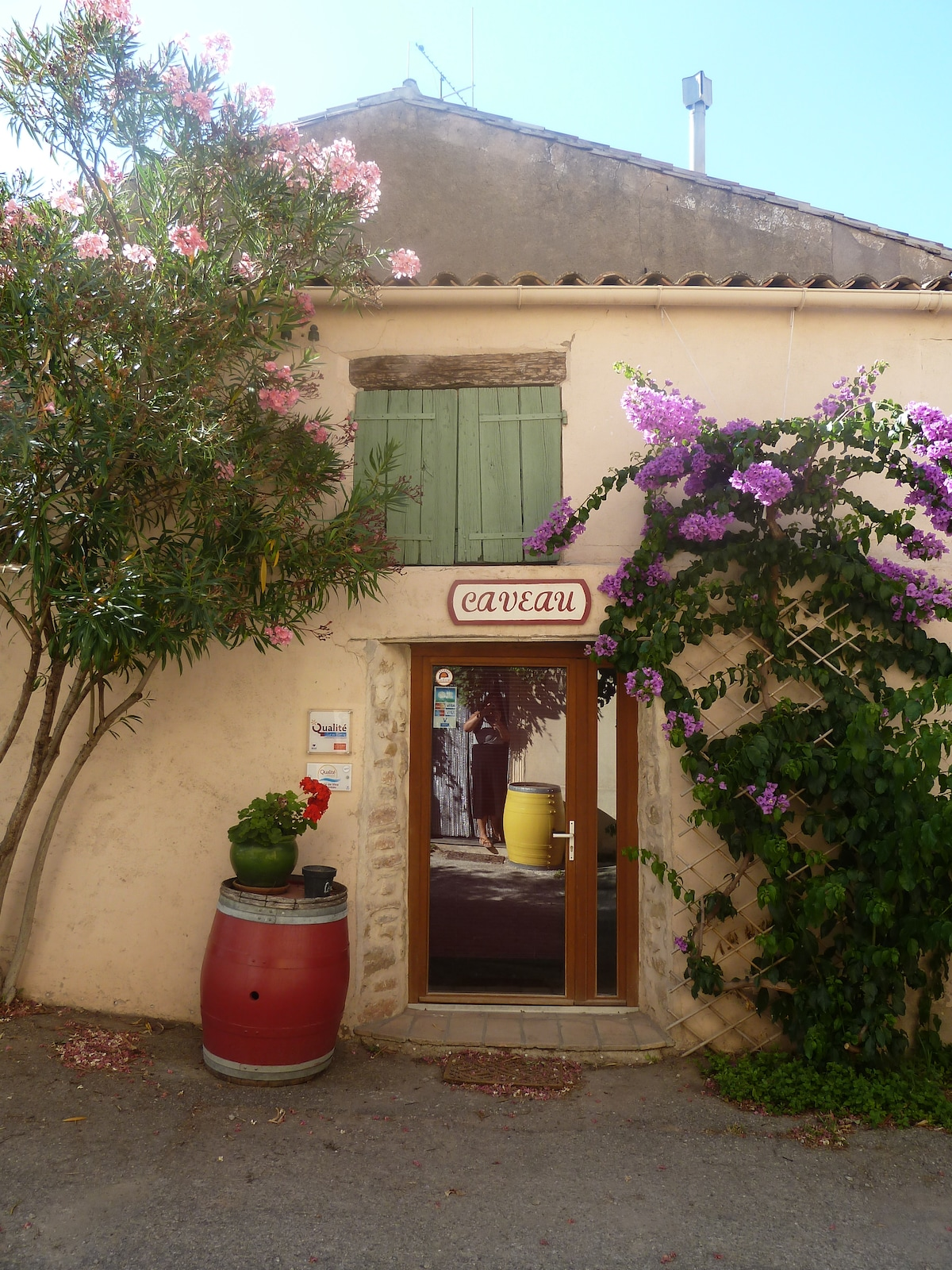 BED AND BREAKFAST AT VINEGROWERS