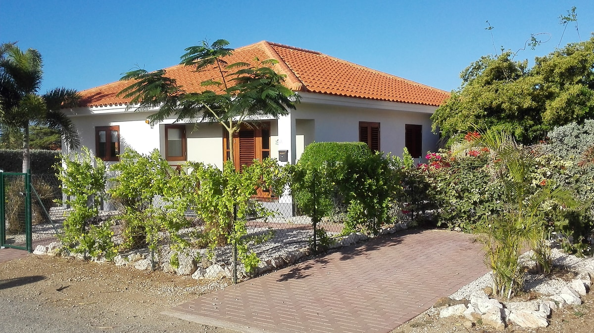 Villa Gogorobi, with private pool on the tropical Island Curacao