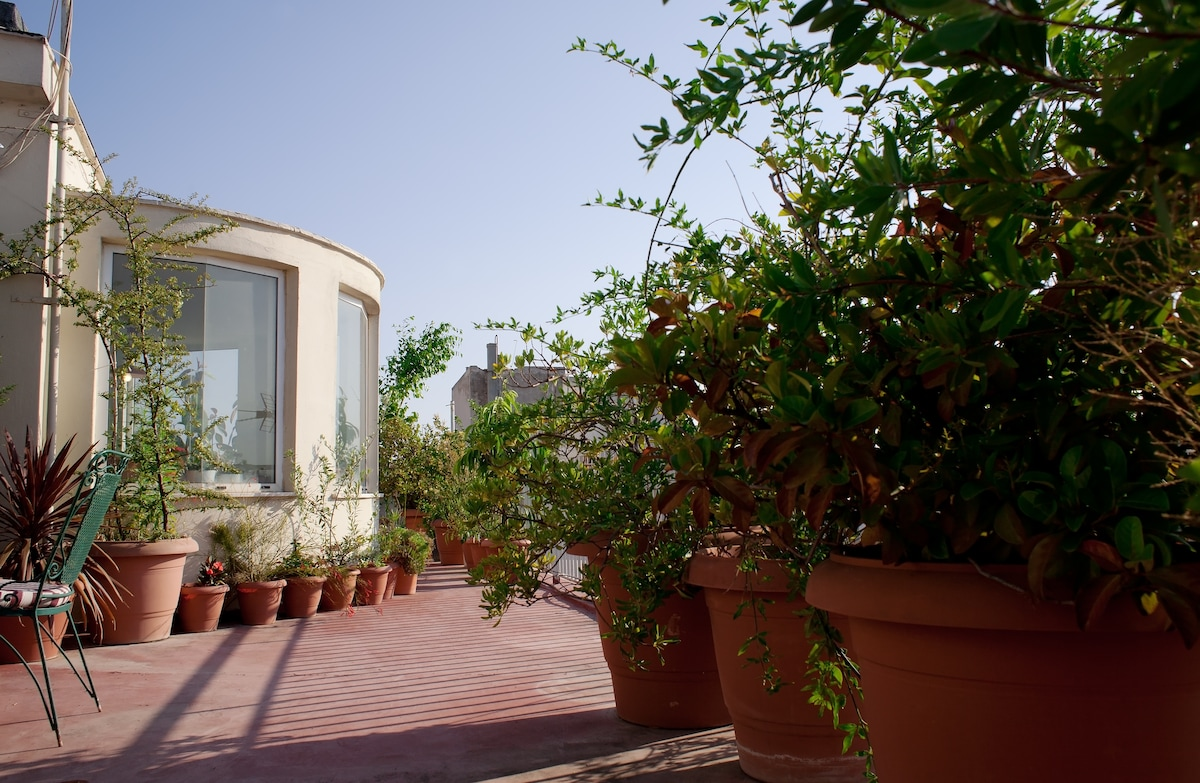 LUSCIOUS ROOF GARDEN IN THE CENTER!