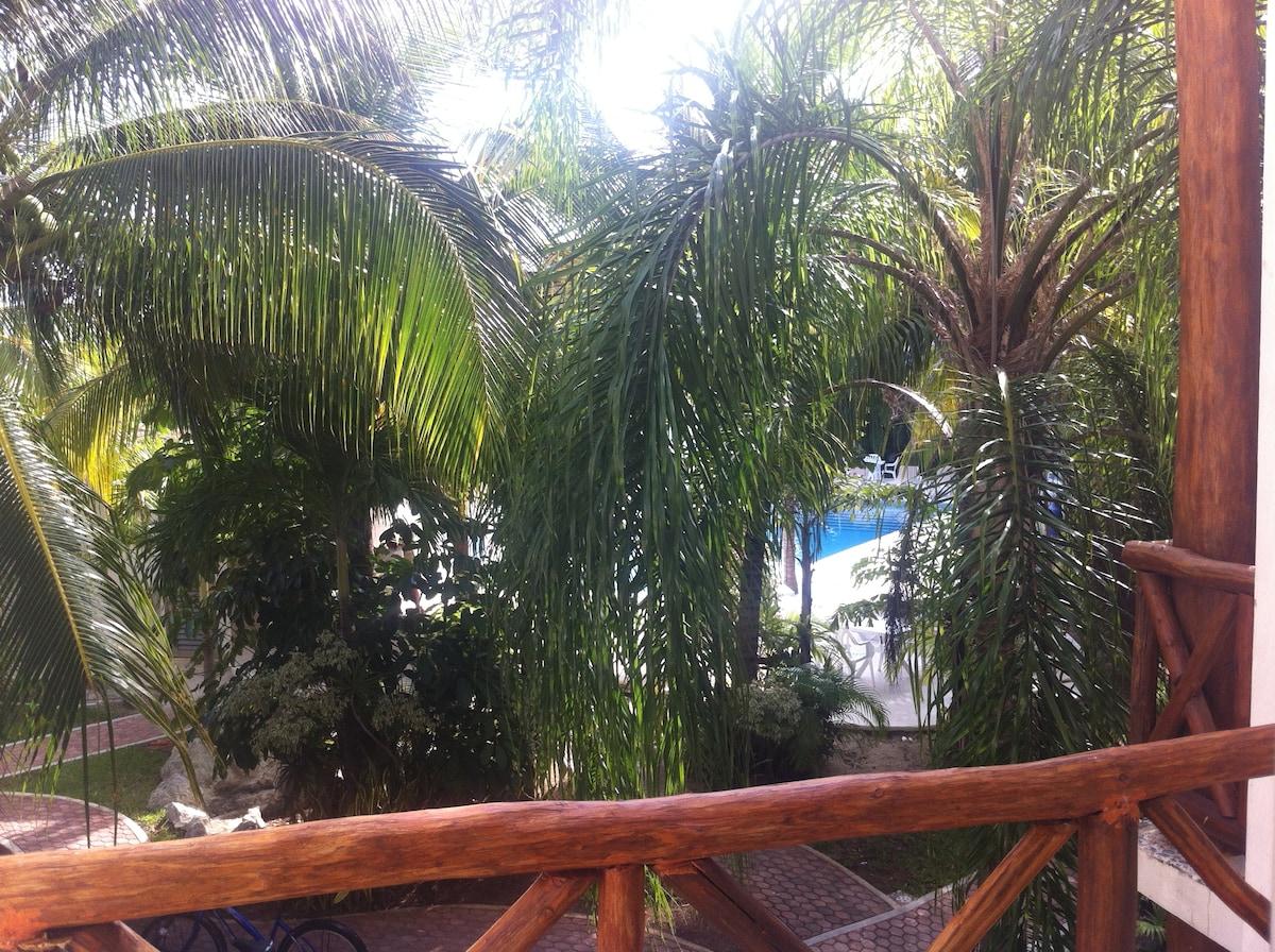 Beach+Pool+Fifth Ave= A Playa Dream