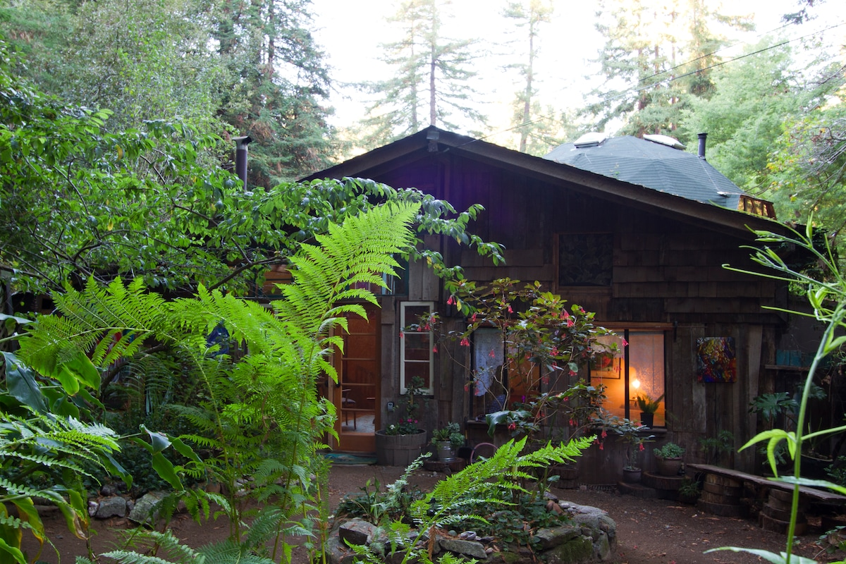 Front of this sweet cottage in the redwoods....