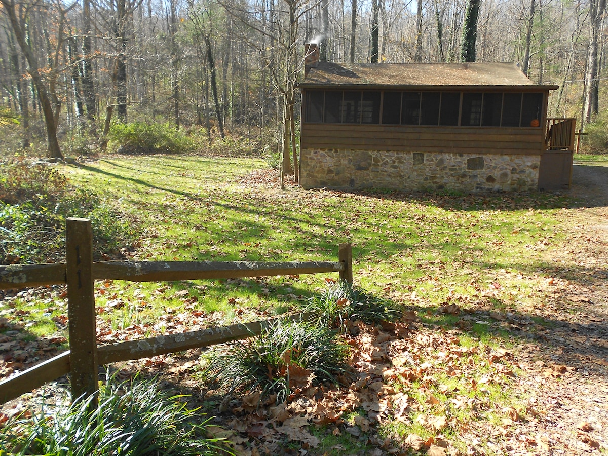 Spring time at Lower Rawley Cabin before the animals and fence were at the cabin.