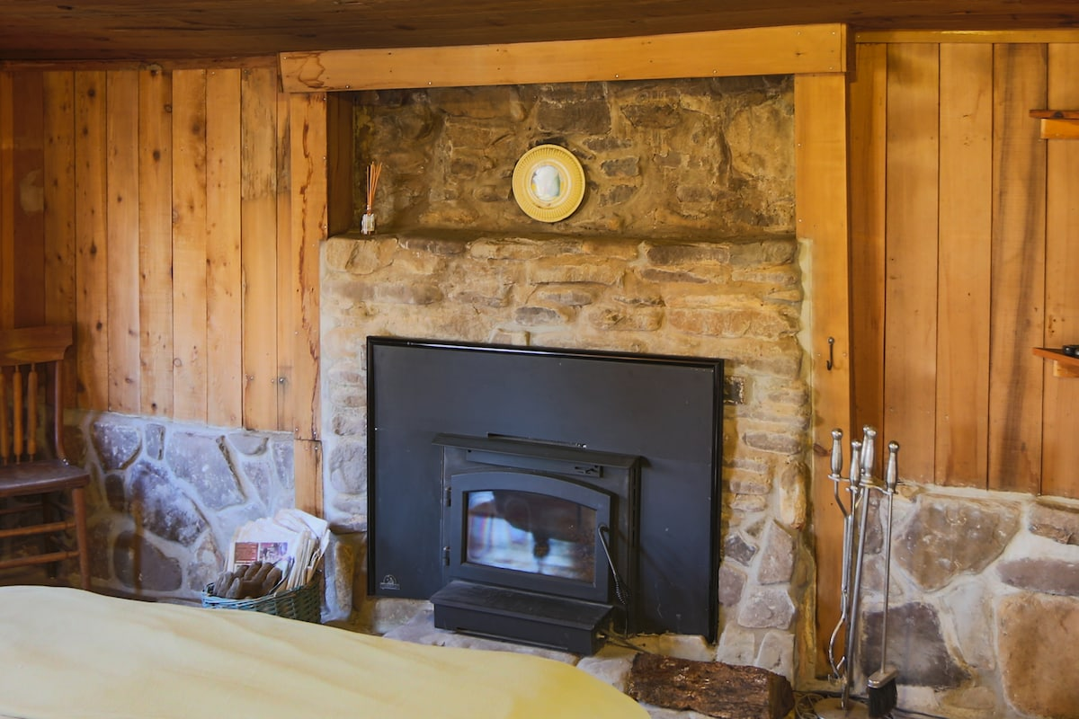 Wood Burning Fireplace Insert in the Bedroom.