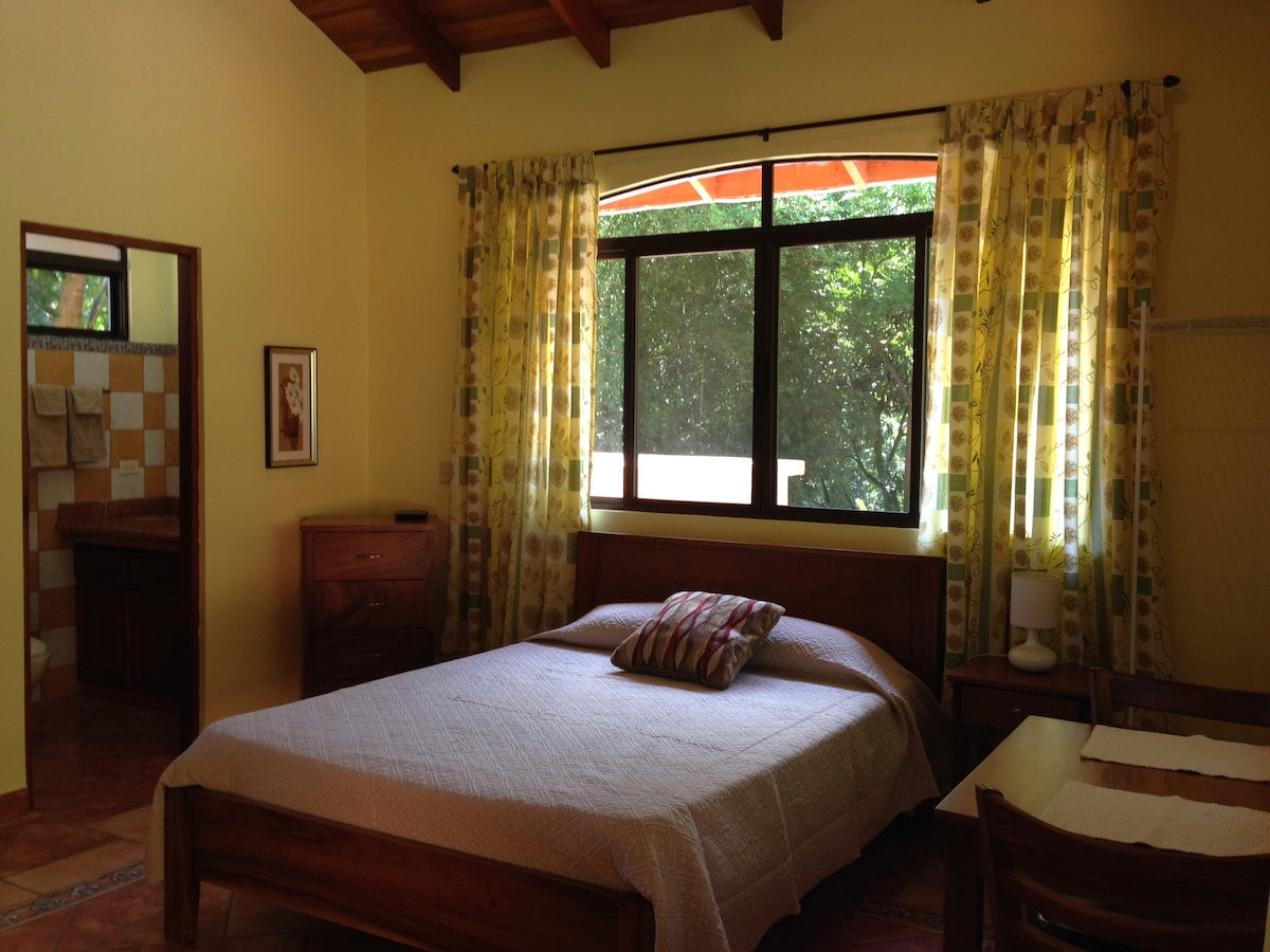 Tortuga Room, newly redecorated, queen bed, queen sofa bed, kitchenette, private bath & shower, private entrance