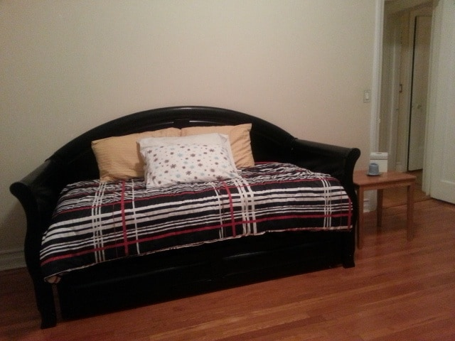Brand new day bed with a twin-size real bed (there is a trundle underneath with a second twin-size bed).