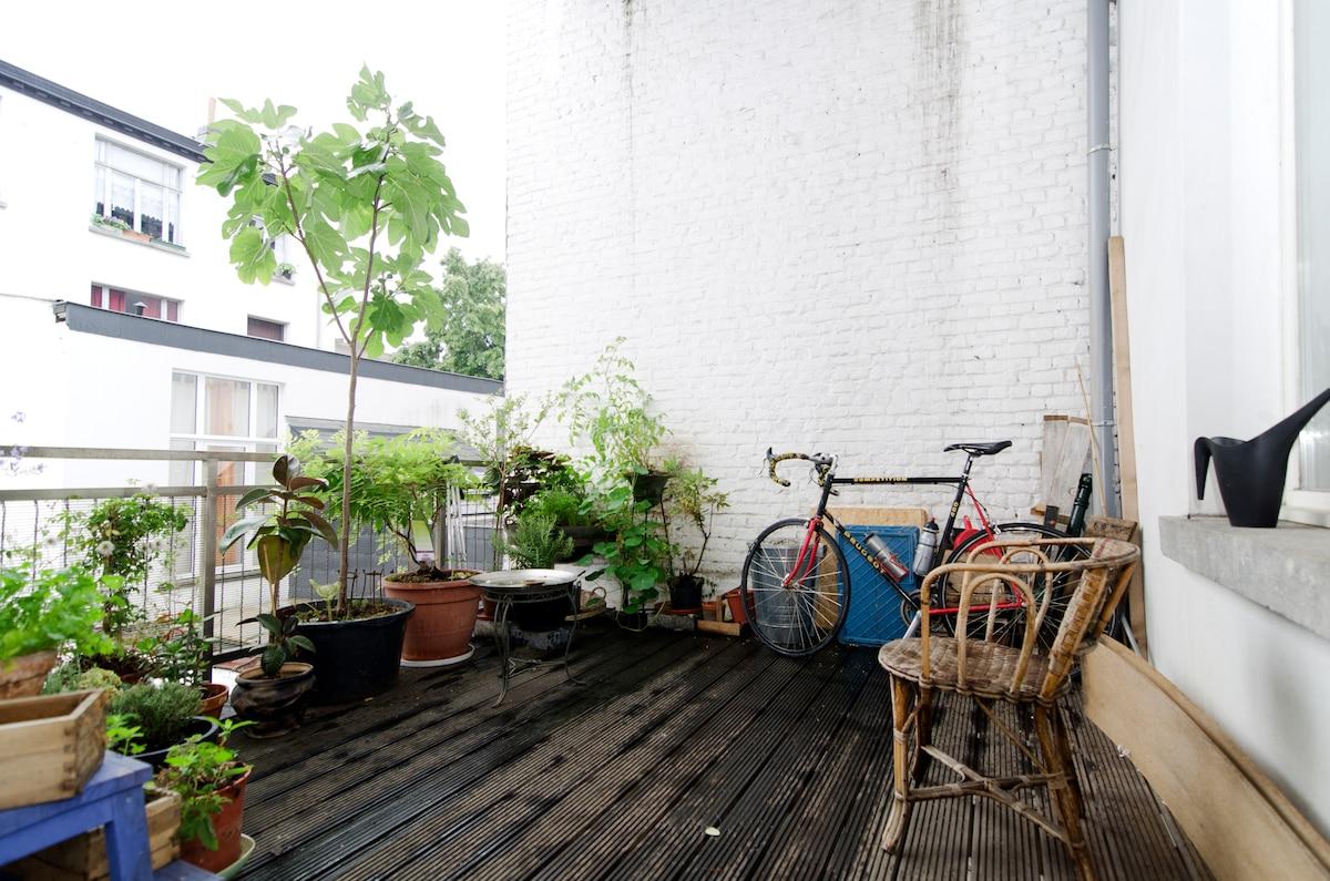 our terrace has lot's of plants