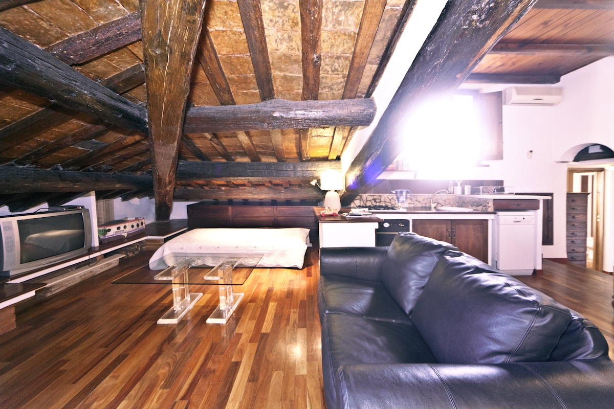 LOFT with FIREPLACE + small TERRACE