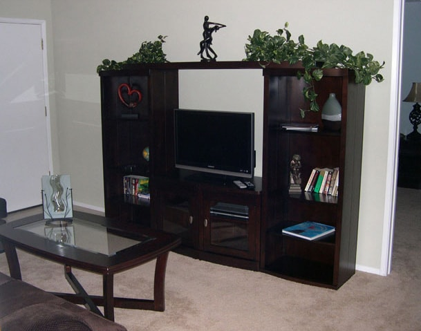 Living room coffee table and entertainment center including flat panel TV and DVD player