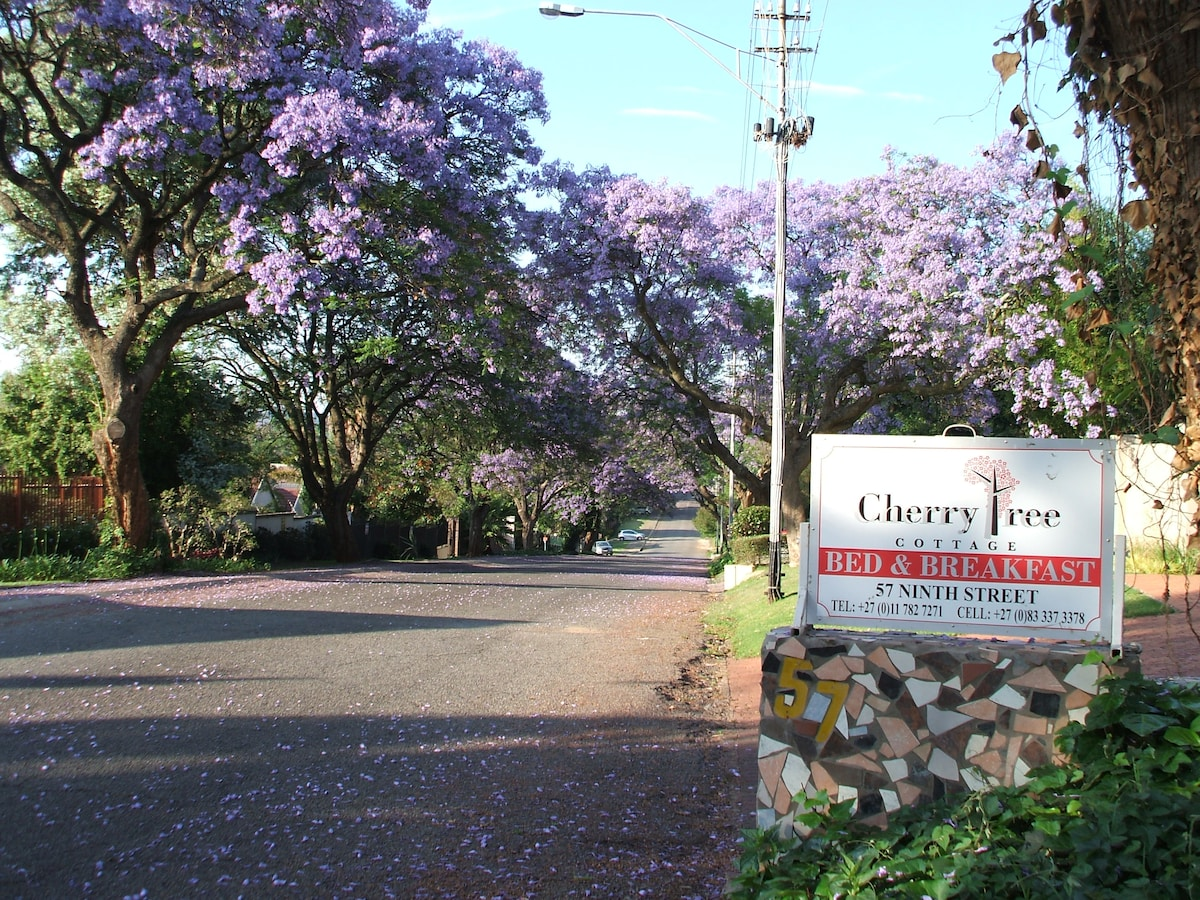 View from the road- approach to entrance. Spring-Jacarandas in full bloom
