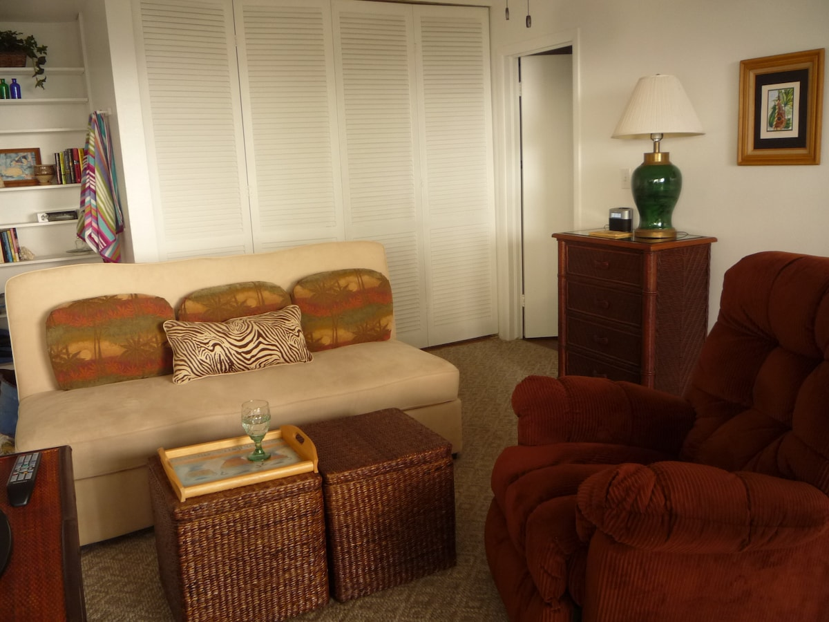 Living Room with TV to the left and Bedroom behind louvered doors.