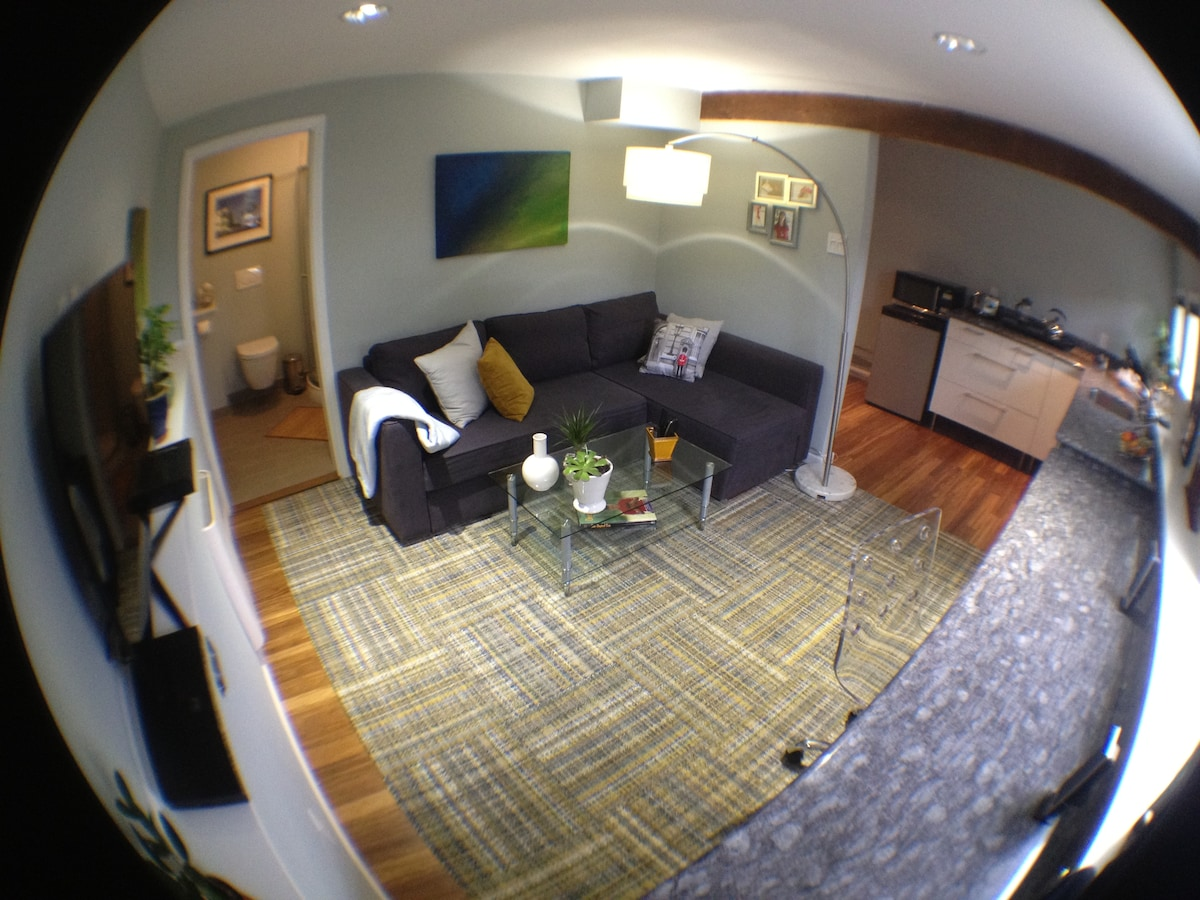 A birds-eye view (through a fish-eye lens) of 80% of this cozy 250 sq. foot palace.  Bigger and better than most Hilton hotel rooms...  NOTE: This photo is old.  The sofa-bed was replaced by a real bed, but it gives you a sense of the room layout.