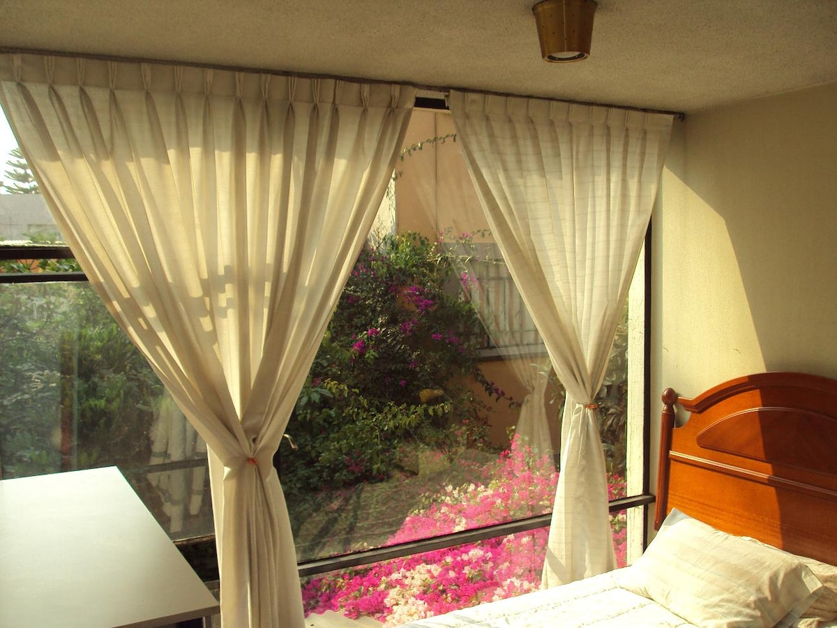 Beautiful single room at Coyoacan!