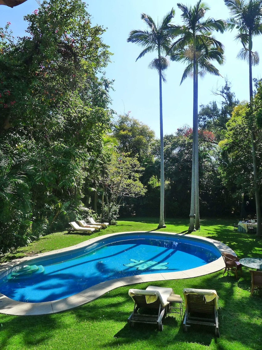 Swimming pool and king palms