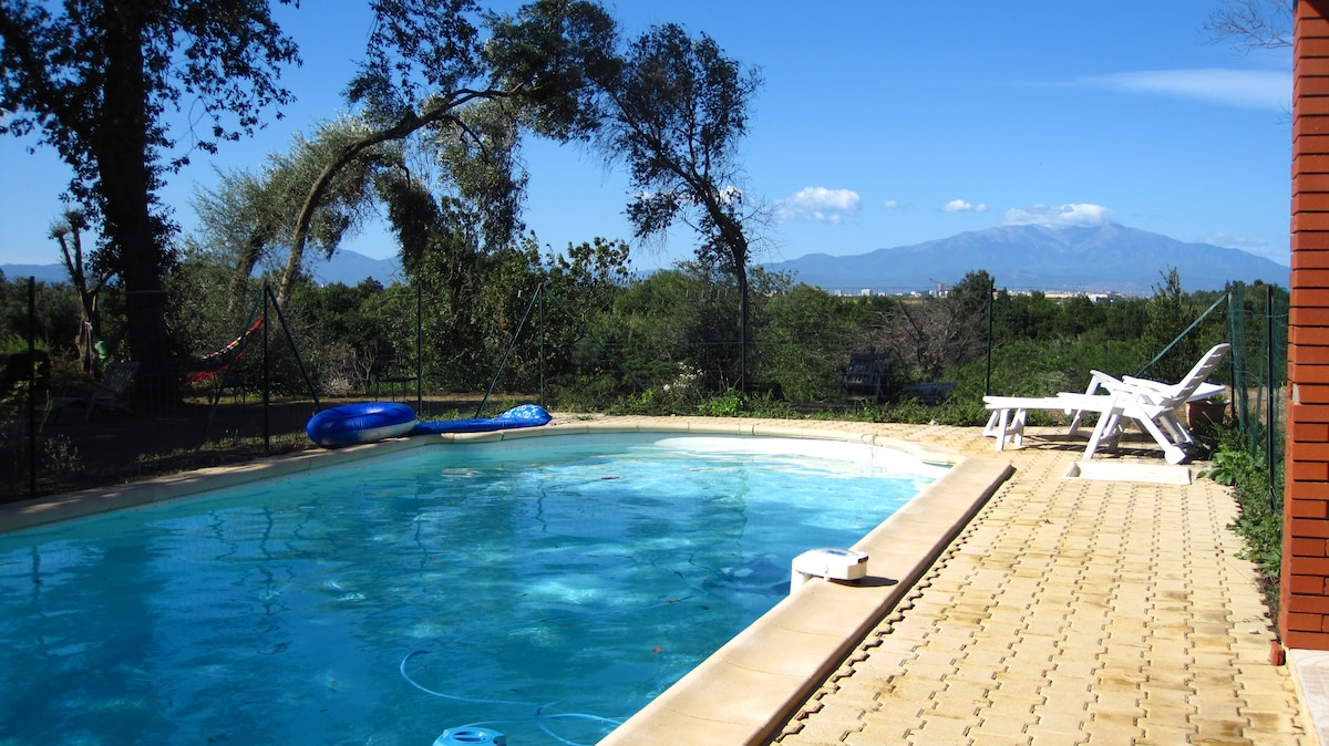 Shared swimming-pool with view toward the Canigou