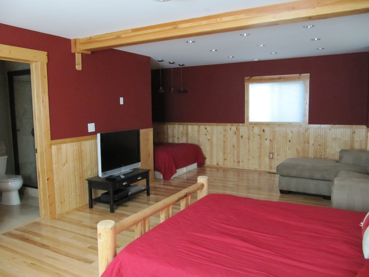 Large en-suite guest bedroom with 2 full size beds and 1 full size pull out couch