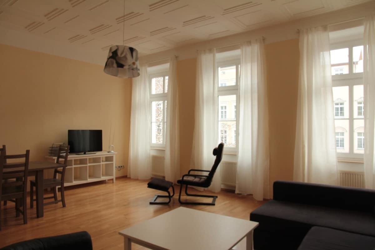 Big central apartment 95qm MITTE