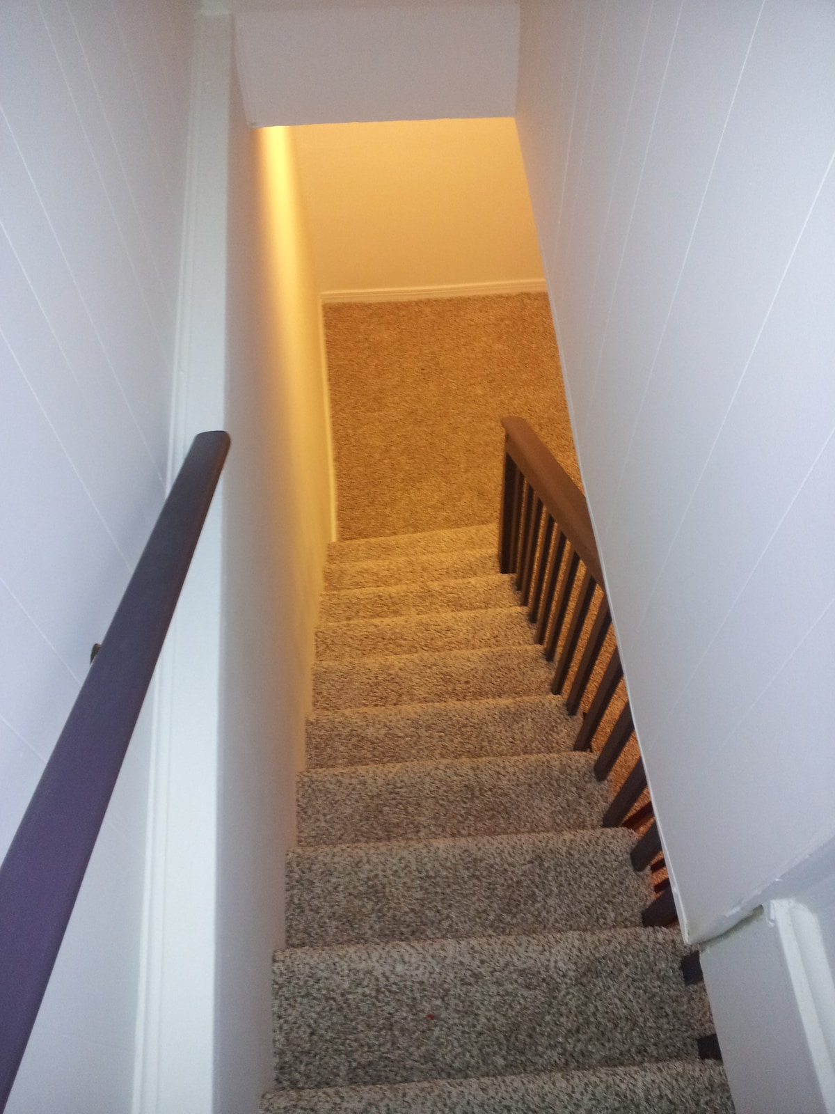 Stairs from main level to basement apartment...