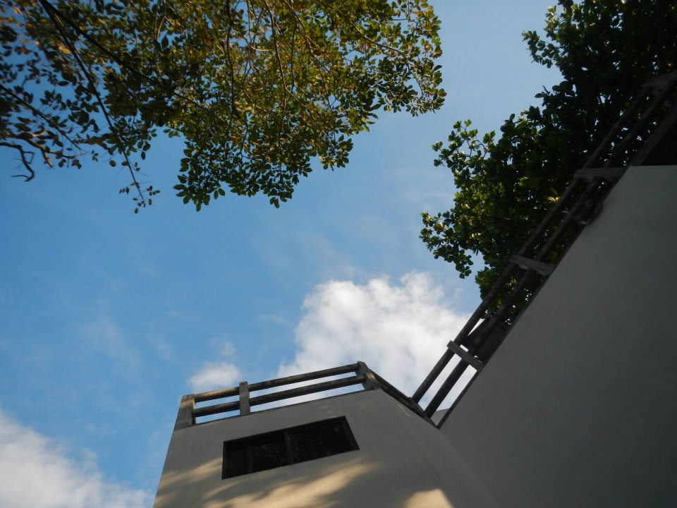 Look from the bottom to the top, Top view is rooftop terrace, surrounded by trees