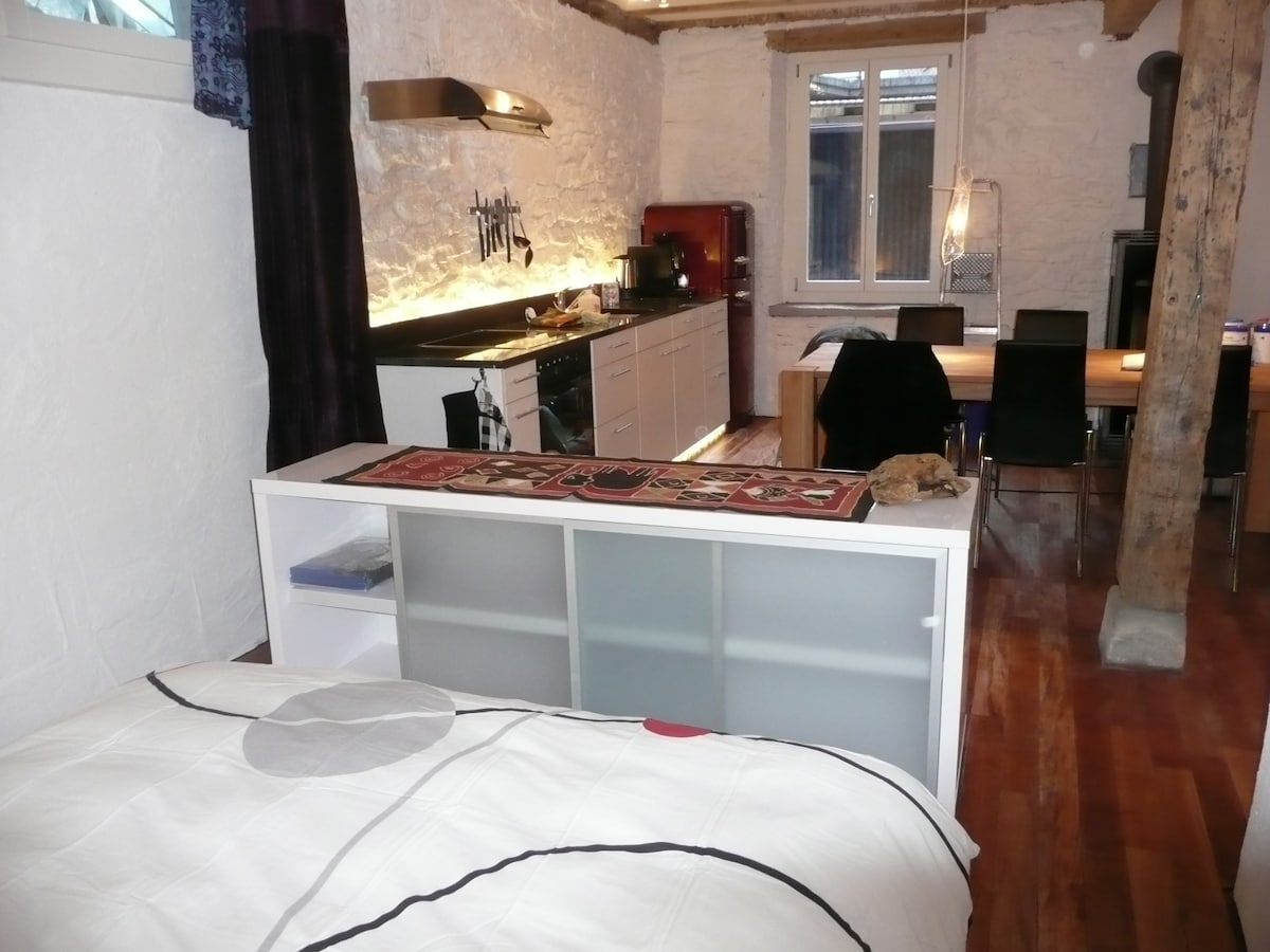 cosy apartment downtown Lucerne