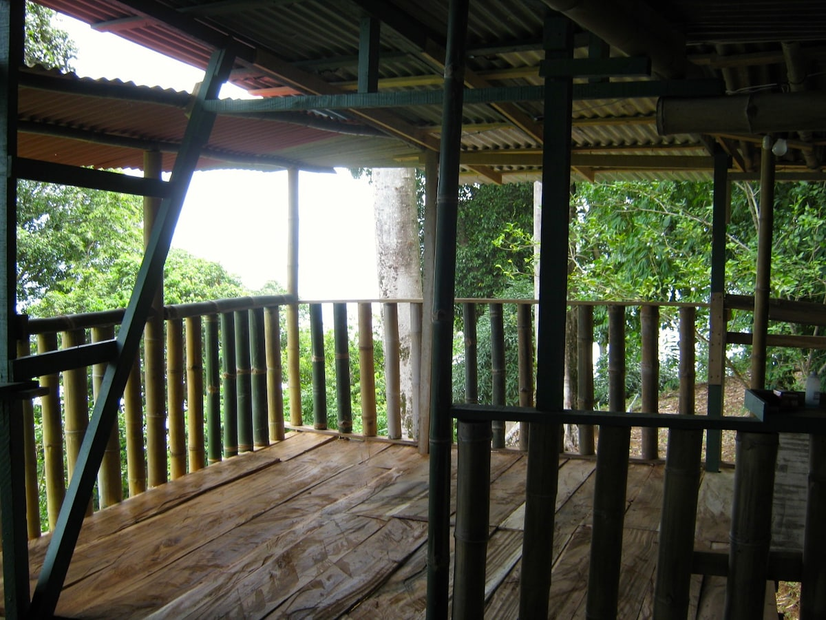 Wildlife viewing balcony