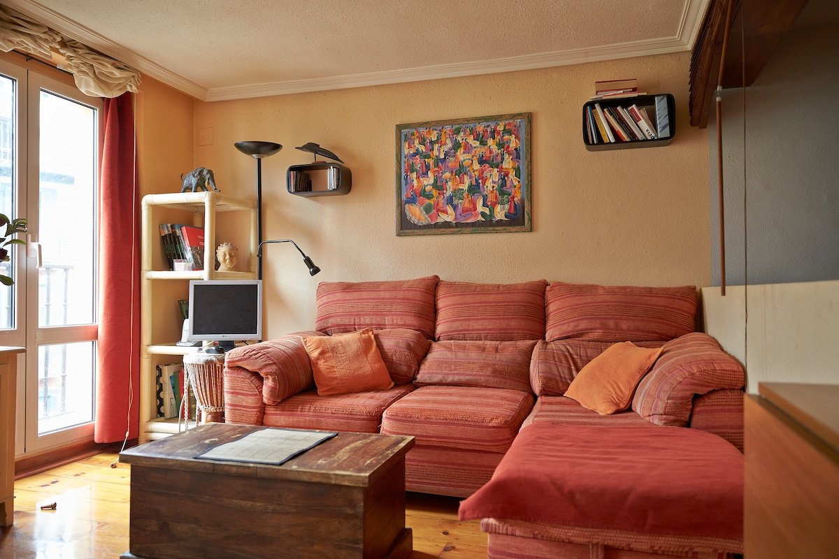 Salón.Sofa cama para una persona con somier de láminas. Wifi
