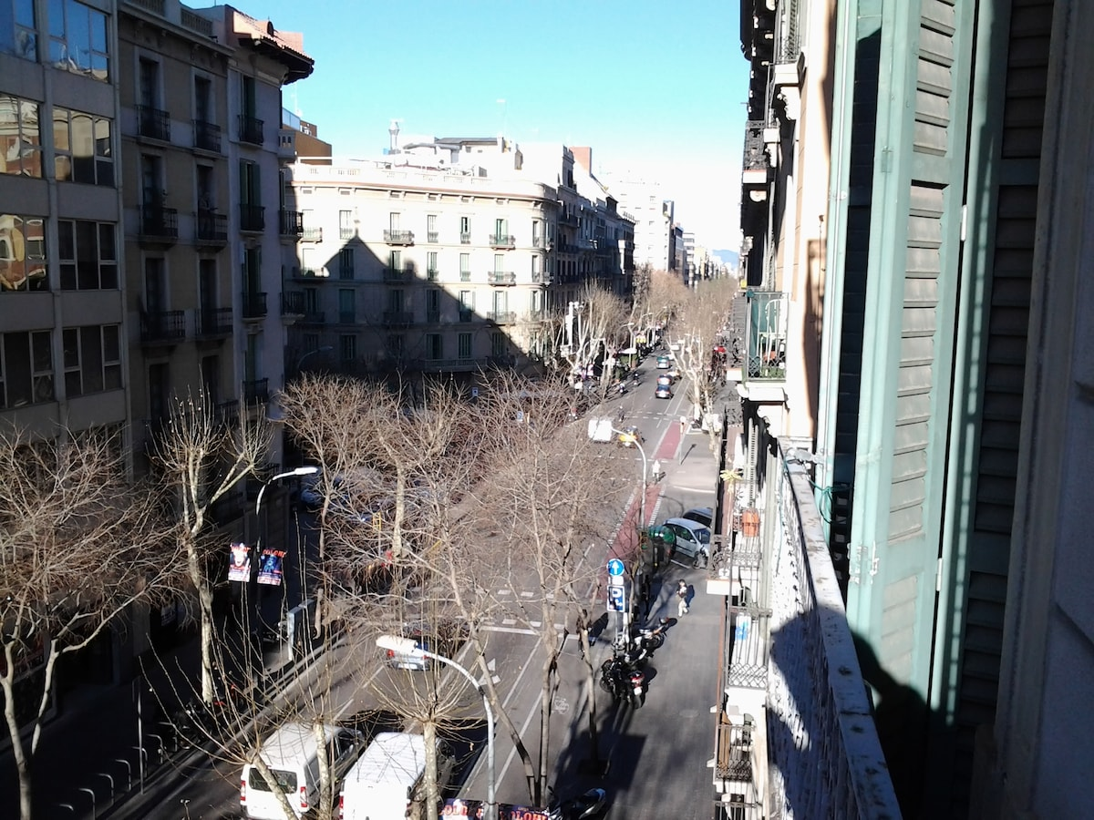 Balcony view out over the avenue. This is two blocks from Plaça Catalunya