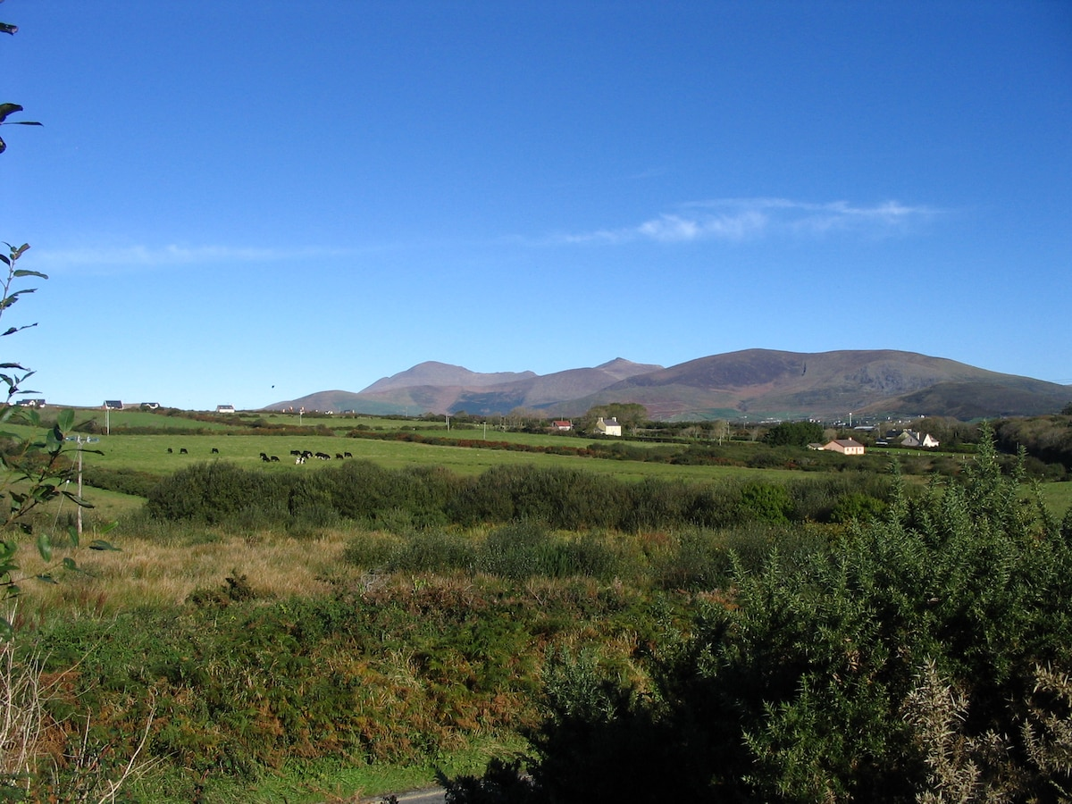 View across the field to Dingle Town and Mount Brandon