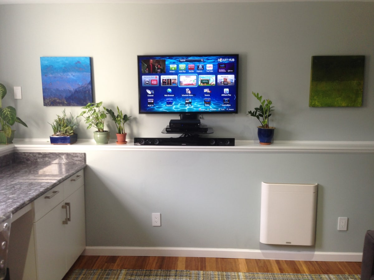 """Your entertainment system with 40"""" HDTV in 3D, Comcast cable, BluRay, and WiFi at 20 Mbps..."""