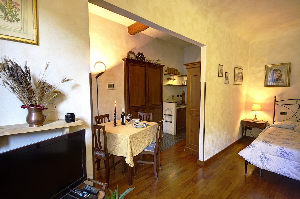 Studio Flat in the Historic Center