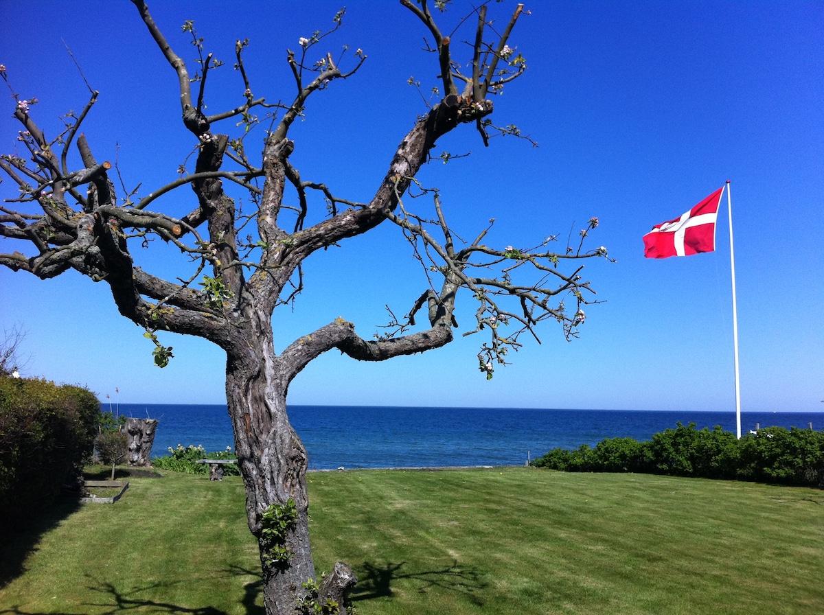 Danish pearl - location by the sea!