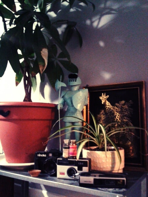 the sunroom: a little soldier to keep you safe amongst all the wild animals ;-)