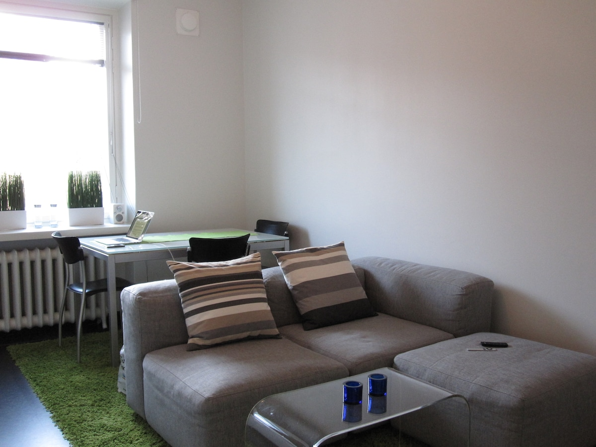 The Room: View from the Entrance door. Sofa, Sofa Table, Dining table for 3. Windows facing to the west on a sunny day.