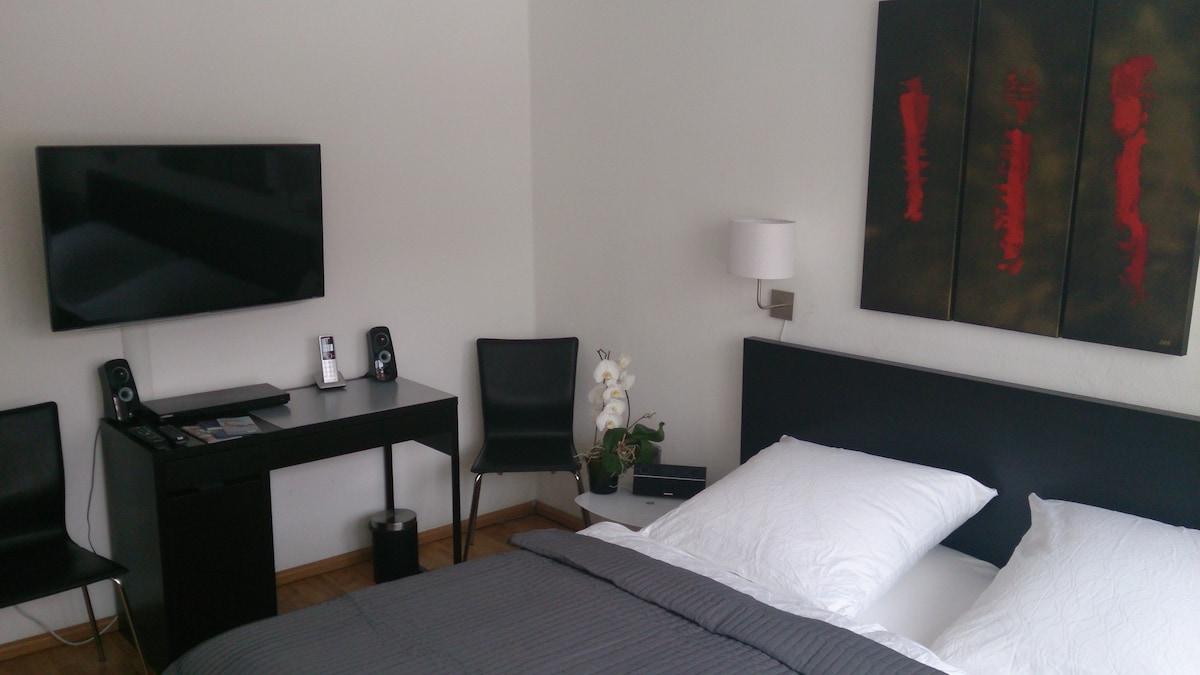 IN THE CITY CENTRE,Modern Apartment