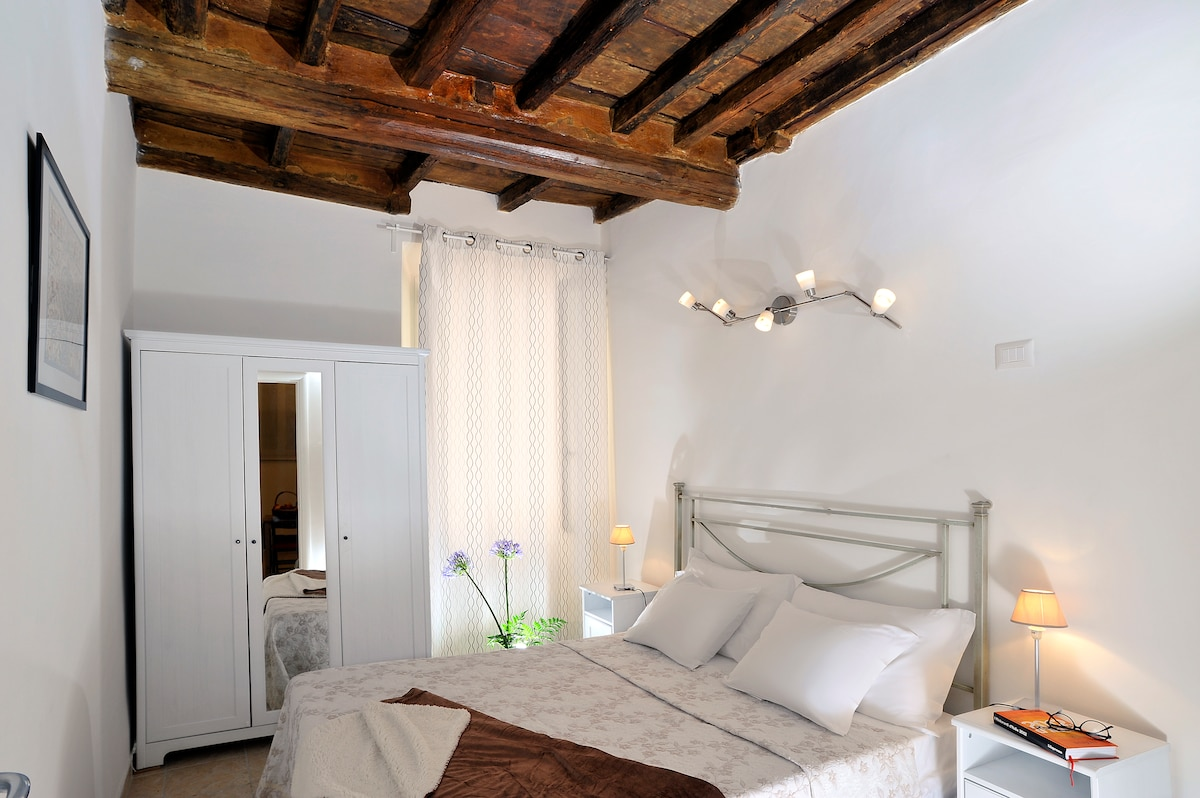 Charming apartment in Trastevere