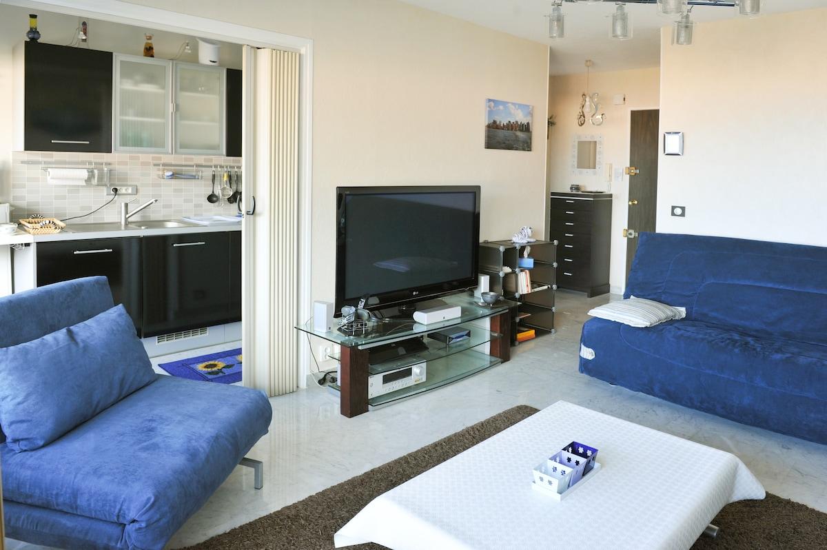 furniture tv, blu ray dvd player, hifi, wifi box,meuble tv,small library- lecteur dvd blu ray, hifi, boitier, big blu sofa bed-grand canapé lit bleu, wifi, petite bibliothèque