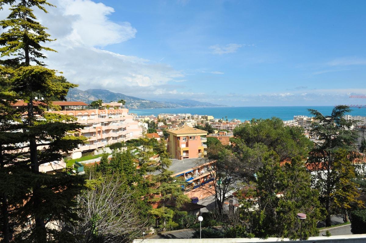 seaview from the terrace - vue à partir de la terrasse