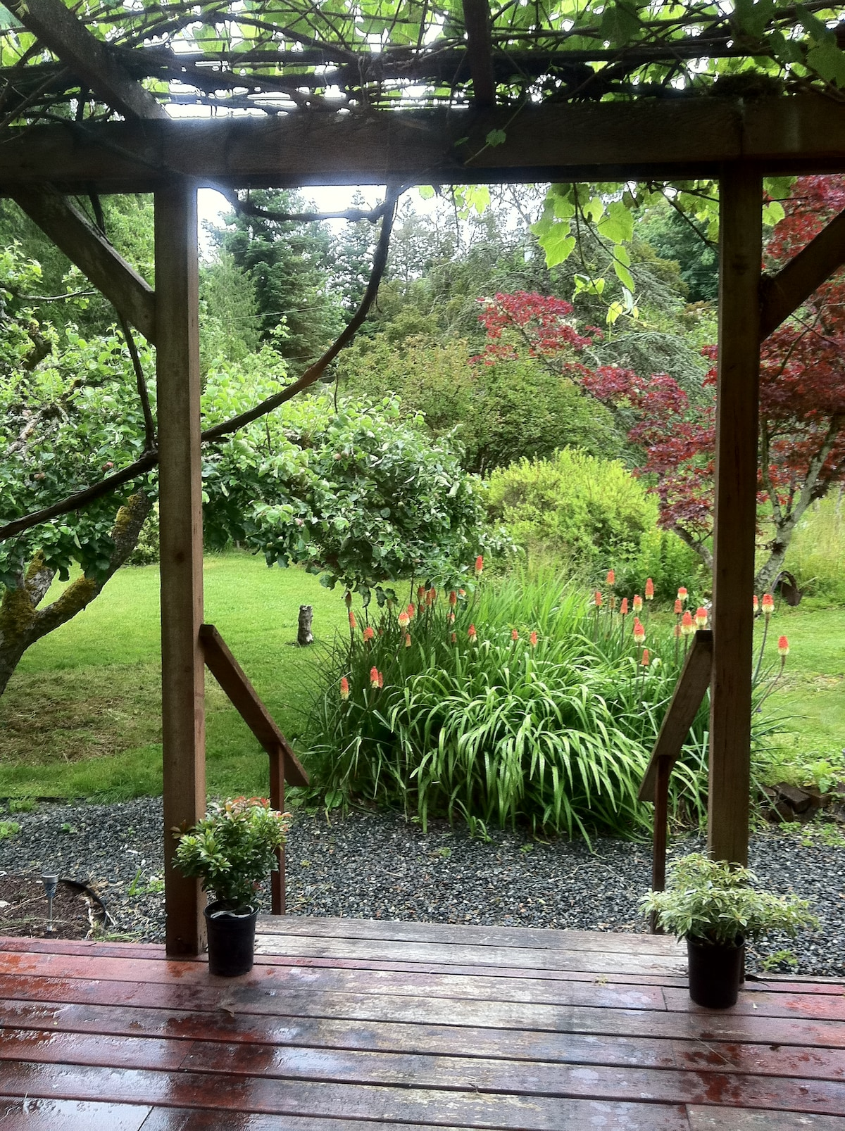 Looking onto the Garden from the front porch.