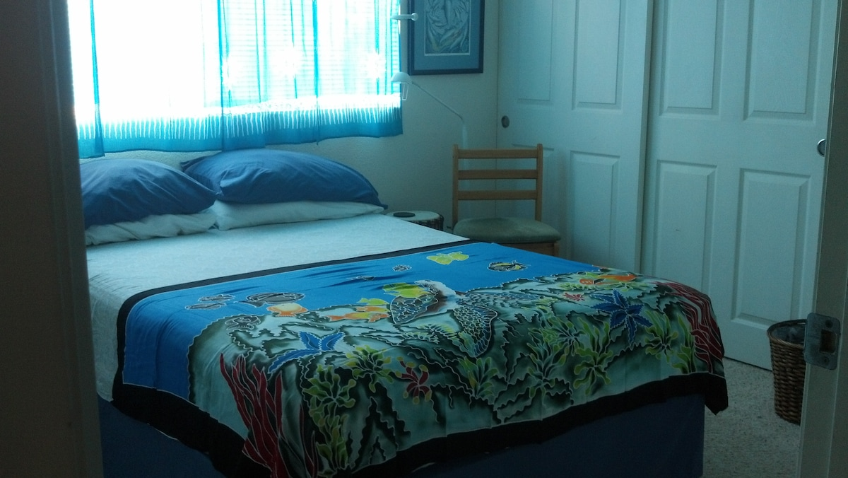 A light, clean room, with a comfortable Double bed. There is a small mini fridge in the closet for your convience.