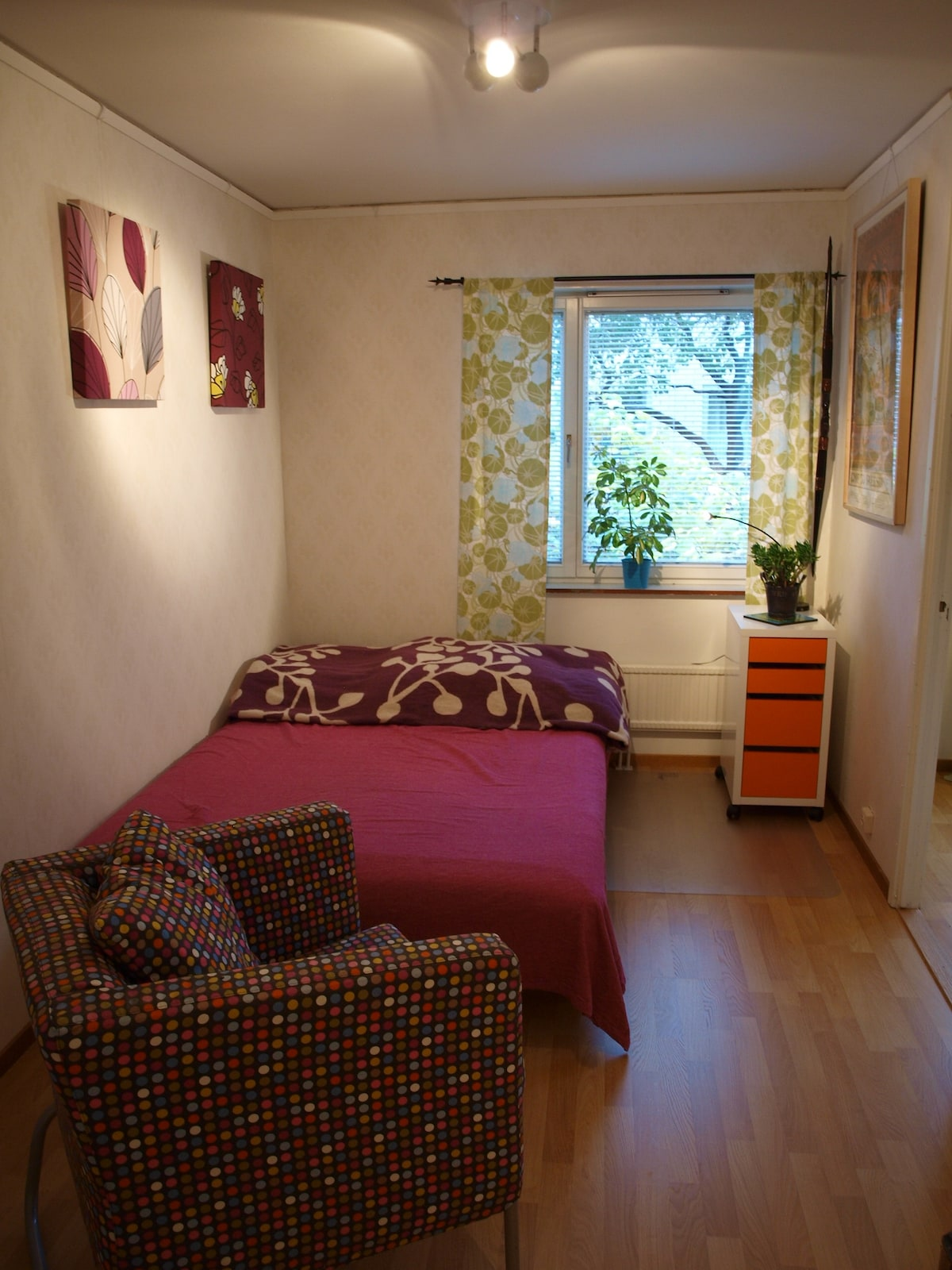 Friendly, comfortable and cozy room