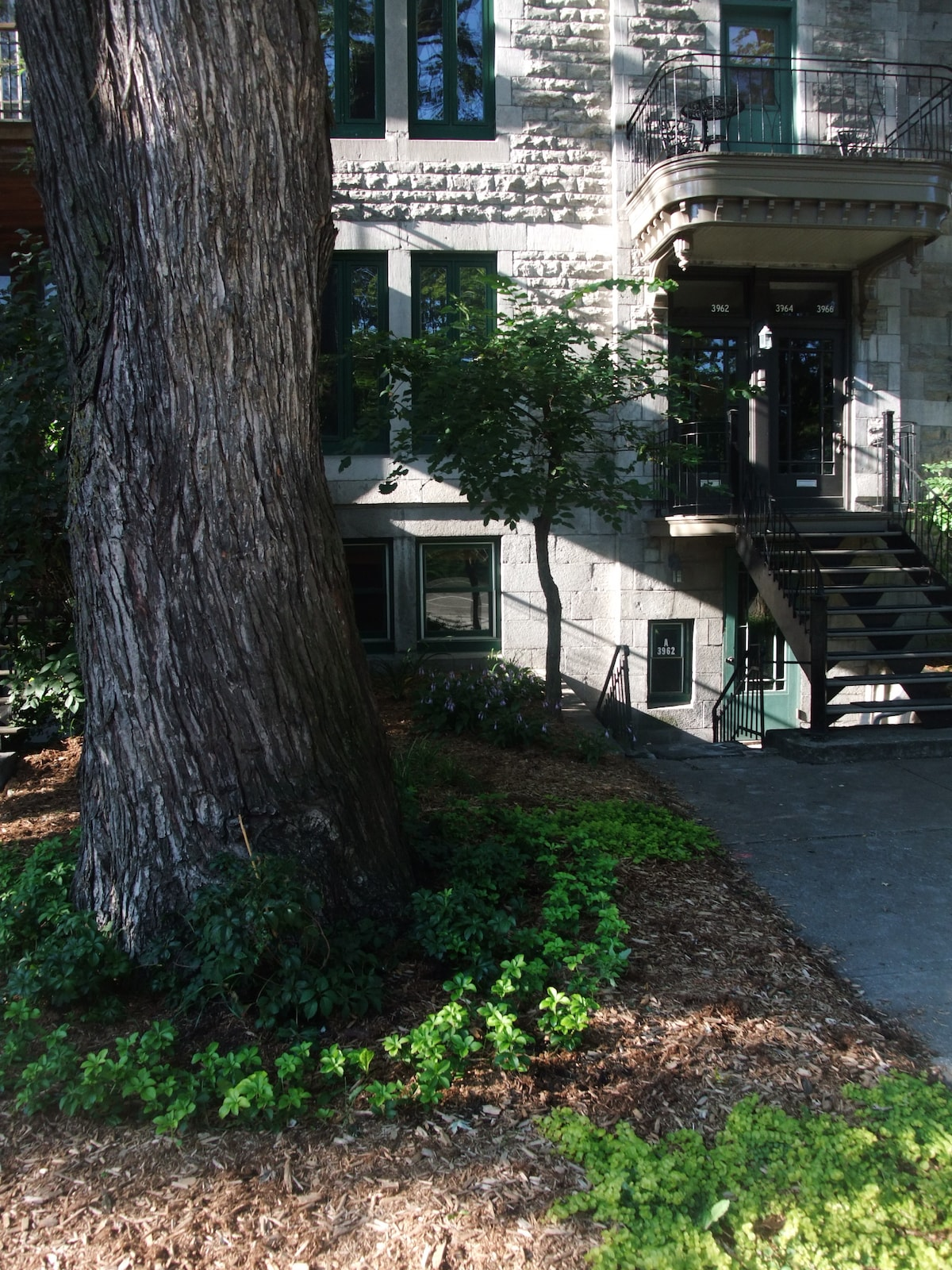view of the house  from the sidewalk