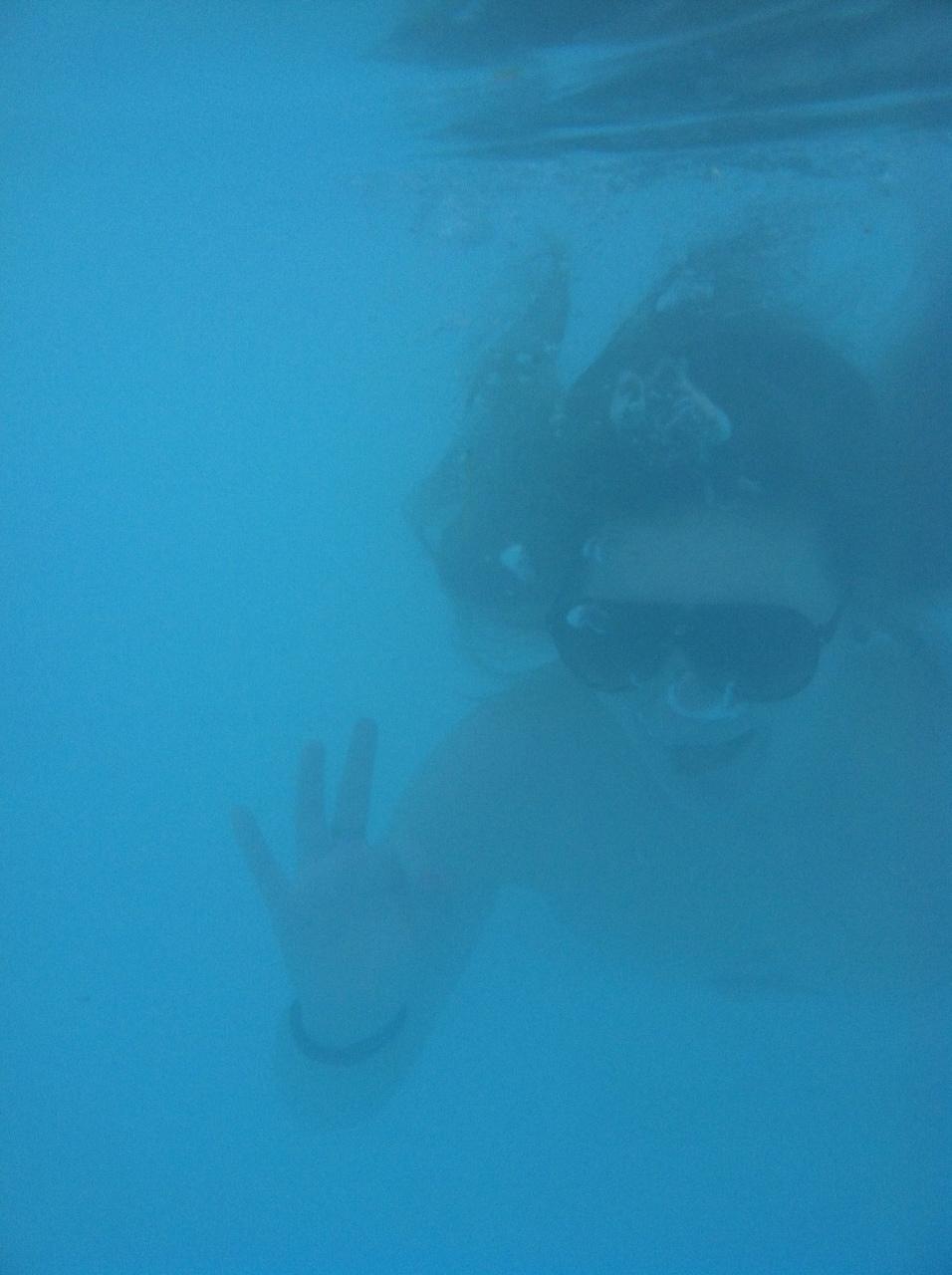 Who needs sun glasses underwater??