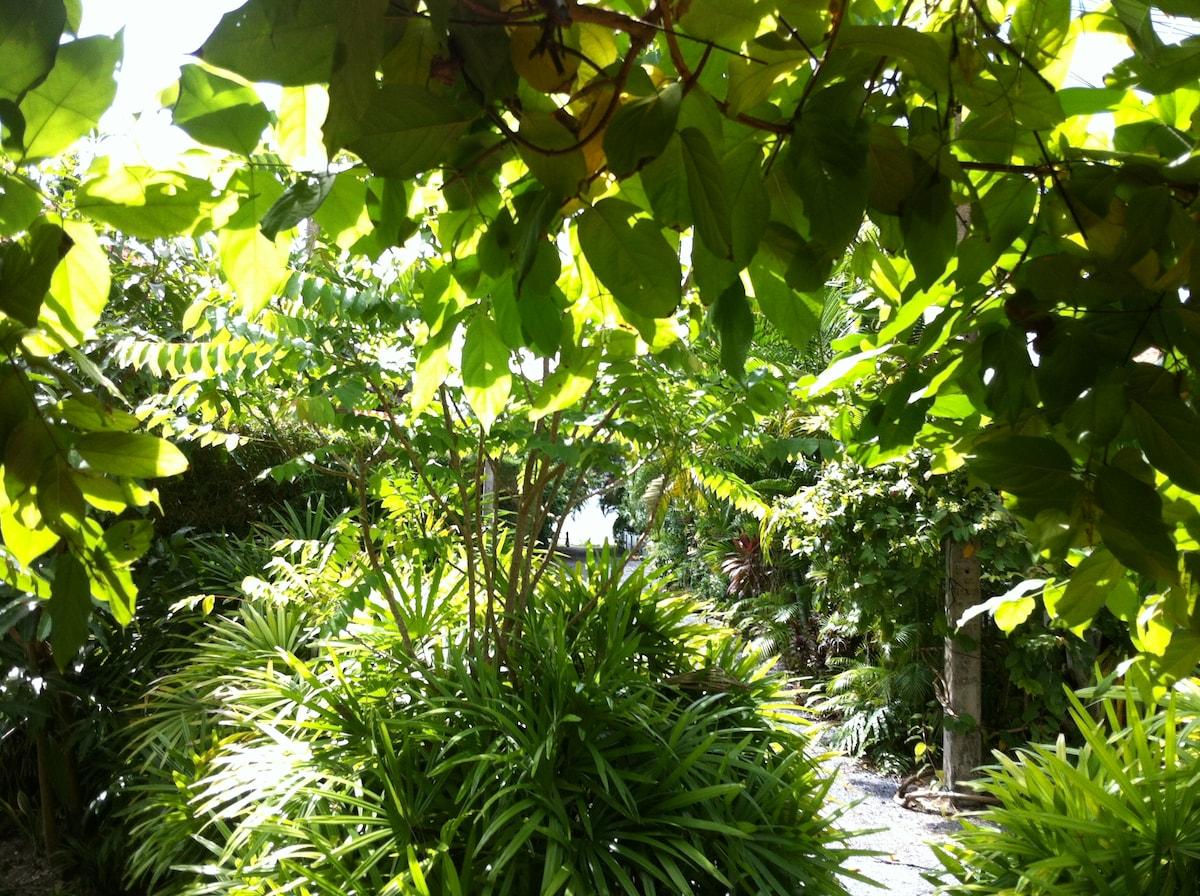 A lush garden...