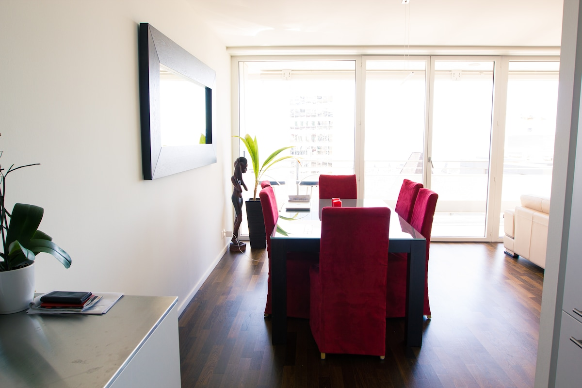 High Standing Flat in Lausanne