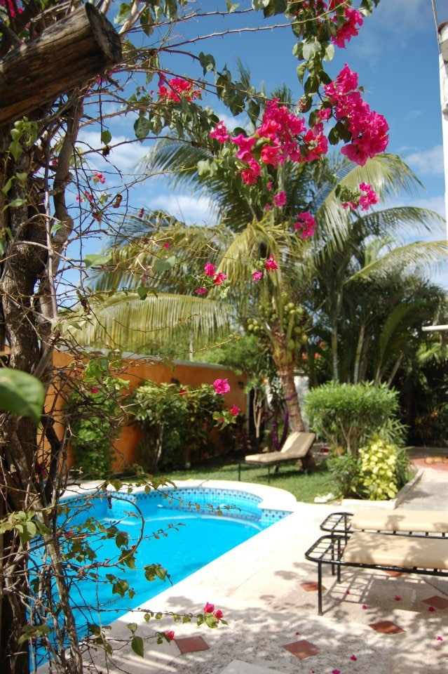 enjoy our private Pool and relax in the beautiful garden.