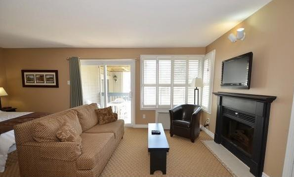 Fireplace, flat screen cable TV, pull out sofa