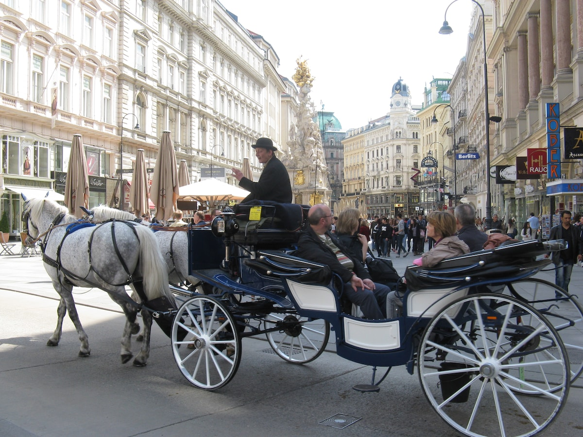 Vienna's most popular tourist hot spot: The Graben - a short 5 mt. walk from your holiday flat!