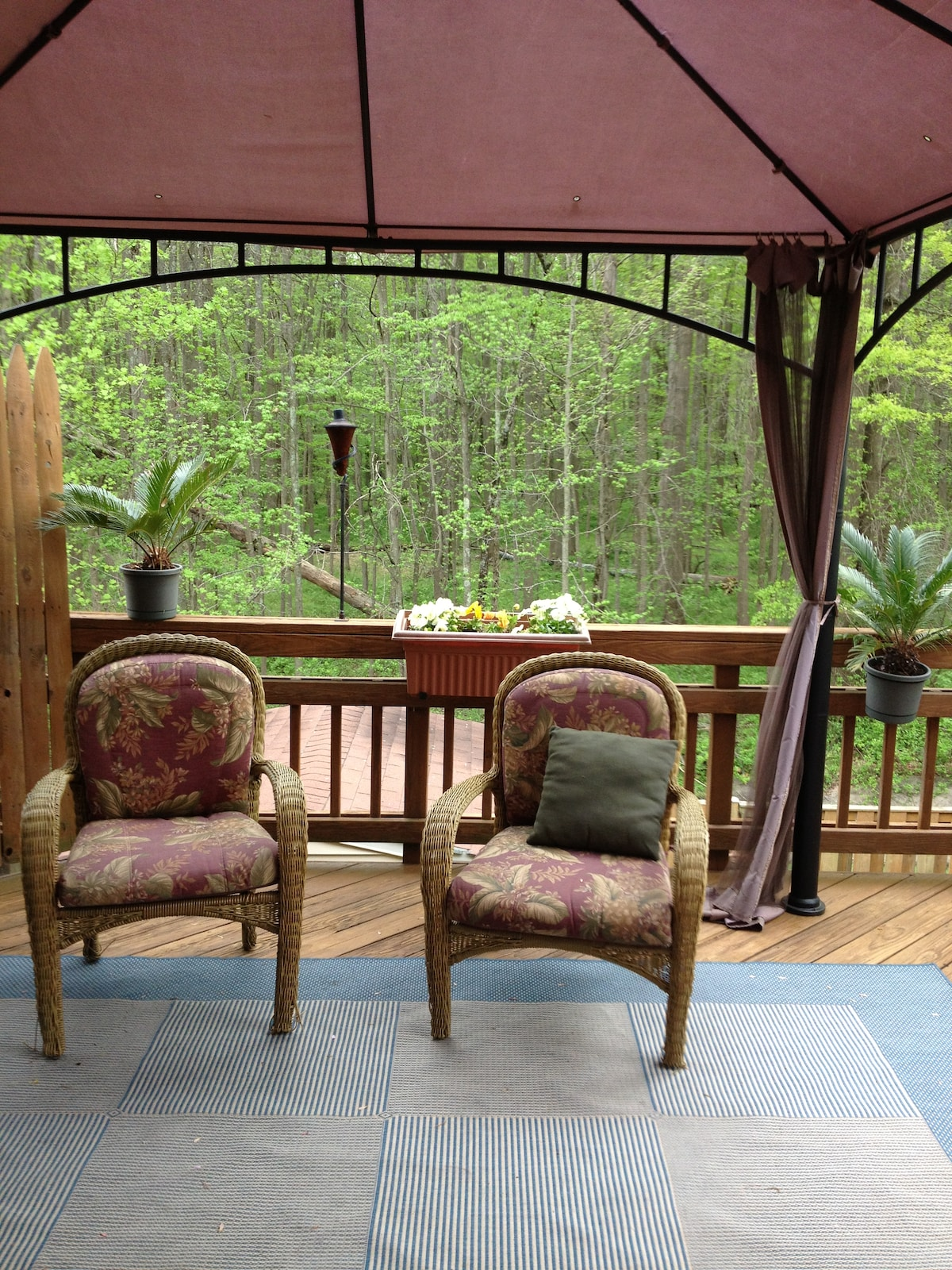 Private deck with view of 7000 acre Nature Preserve.
