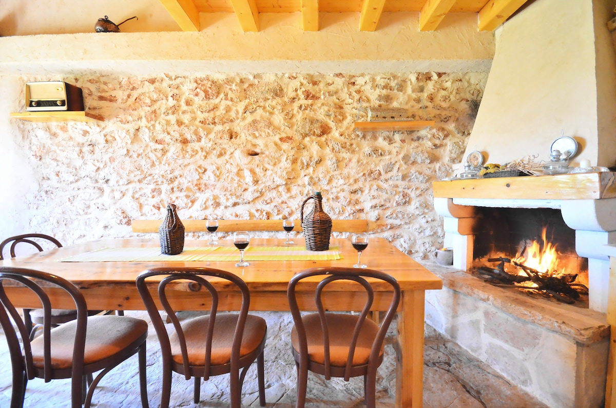kitchen with fireplace and big table for 8