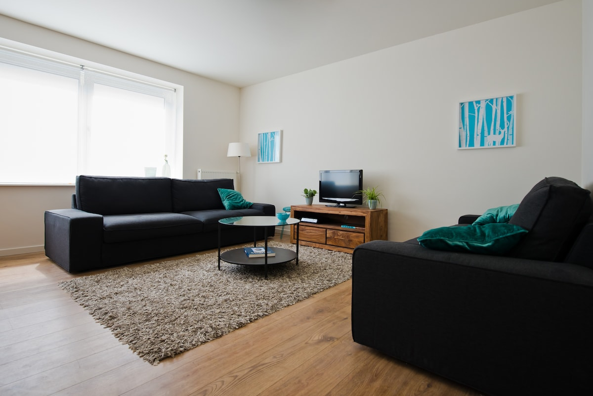 Sitting area with digital tv, spacious sofa and sofa bed