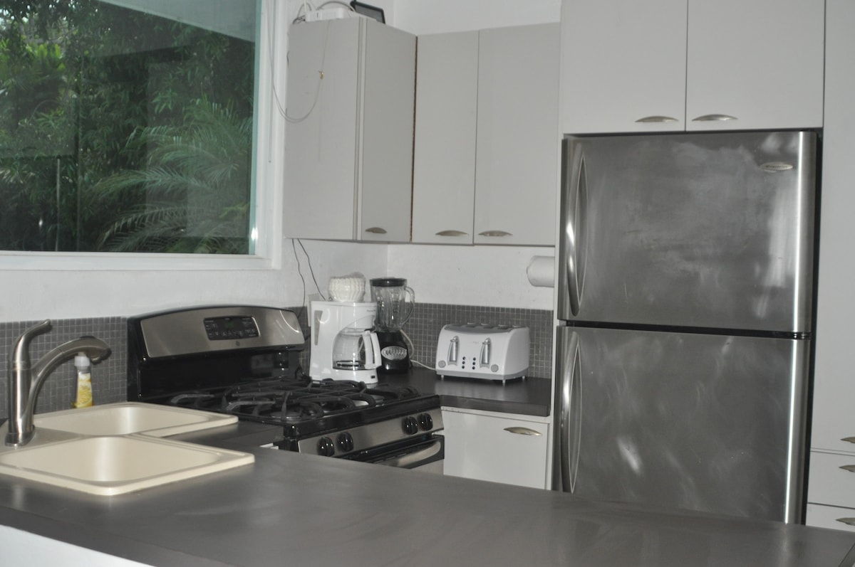 All stainless appliances including a dishwasher, gas stove, toaster, blender and coffee maker